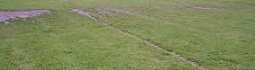 Grass Pitch Wear