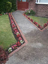 Path side decorative planting with Begonia