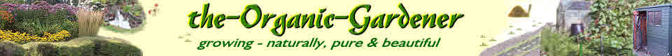 Logo for organic gardening on winter flowers
