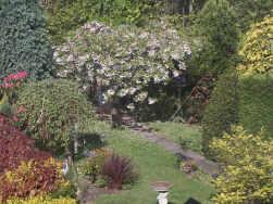 Joes Spring Garden